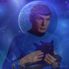 Spock Alien Cat Space Love