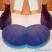 meditation practice cat